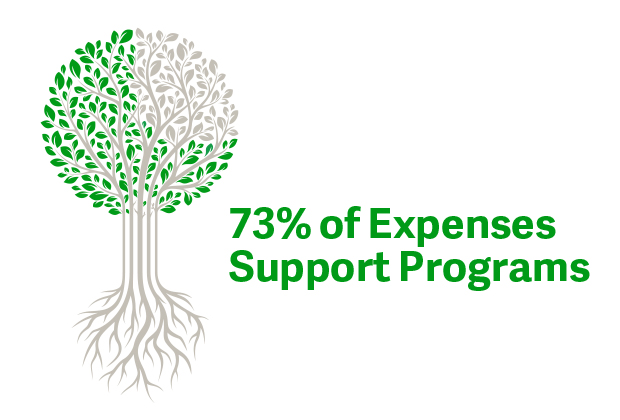 85% of revenue goes to programs