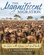 The Magnificent Migration
